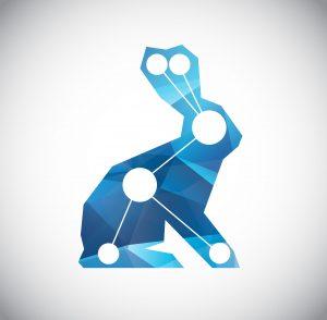 A Quick Rabbit