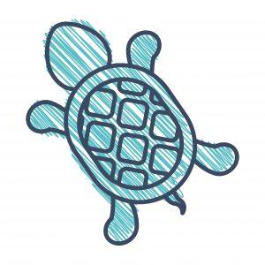 A Steady Tortoise