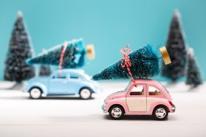 Cars carrying Christmas Trees